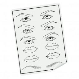 Piel de prácticas, labios y cejas